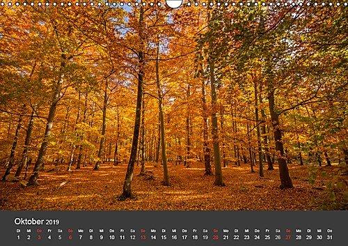 Mecklenburg-Vorpommern (Wandkalender 2019 DIN A3 quer): Deutschlands Natur (Monatskalender, 14 Seiten ) (CALVENDO Orte) - 11