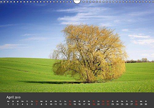 Mecklenburg-Vorpommern (Wandkalender 2019 DIN A3 quer): Deutschlands Natur (Monatskalender, 14 Seiten ) (CALVENDO Orte) - 5