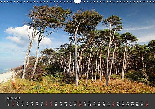 Mecklenburg-Vorpommern (Wandkalender 2019 DIN A3 quer): Deutschlands Natur (Monatskalender, 14 Seiten ) (CALVENDO Orte) - 7