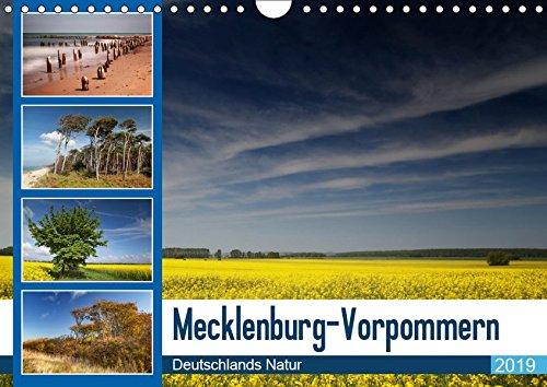 Mecklenburg-Vorpommern (Wandkalender 2019)