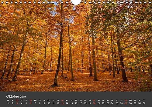 Mecklenburg-Vorpommern (Wandkalender 2019 DIN A4 quer): Deutschlands Natur (Monatskalender, 14 Seiten ) (CALVENDO Orte) - 11