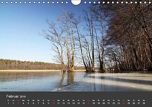 Mecklenburg-Vorpommern (Wandkalender 2019 DIN A4 quer): Deutschlands Natur (Monatskalender, 14 Seiten ) (CALVENDO Orte) - 3