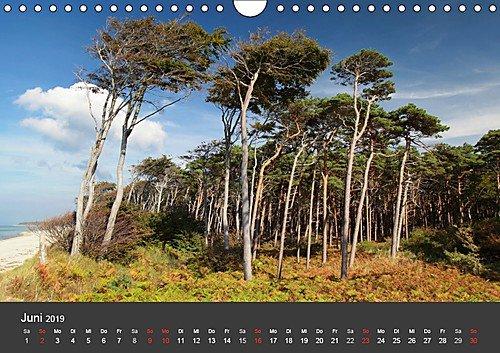 Mecklenburg-Vorpommern (Wandkalender 2019 DIN A4 quer): Deutschlands Natur (Monatskalender, 14 Seiten ) (CALVENDO Orte) - 7